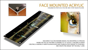 acrylic-face_overview-1